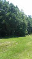 00 Edisto River Road, Branchville, SC 29432
