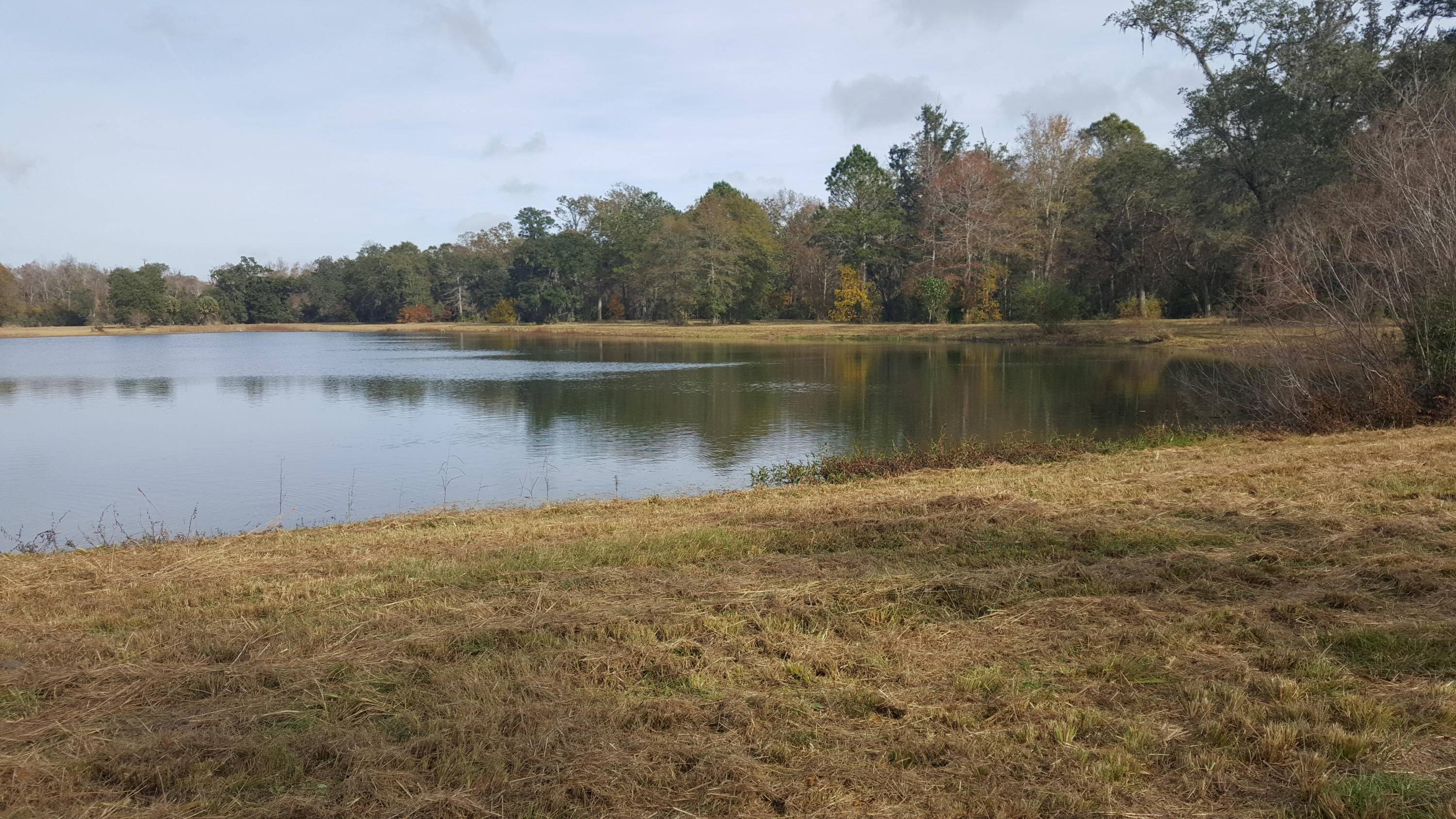 Photo of 4169 Chisolm Rd, Johns Island, SC 29455