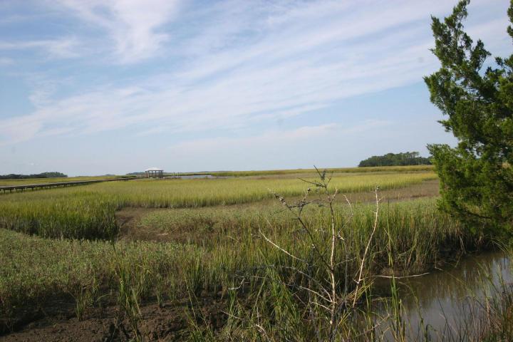 Photo of 8935 Sandy Creek Rd, Edisto Island, SC 29438