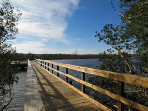 Home for Sale Colonial Chatsworth Circle, Summers Bend On The Ashley, Ladson, SC
