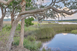 Home for Sale Nobels Point Street , Daniel Island Park, Daniels Island, SC