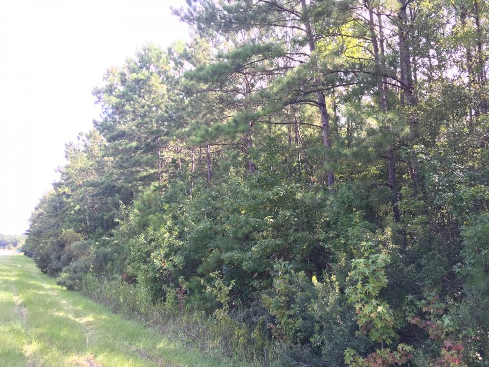 Photo of 0 Highway 52