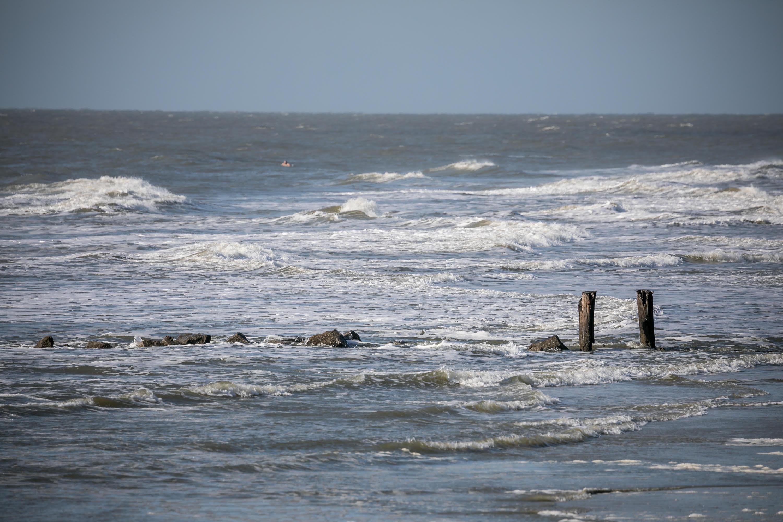 Photo of 1216 E Arctic Ave, Folly Beach, SC 29439