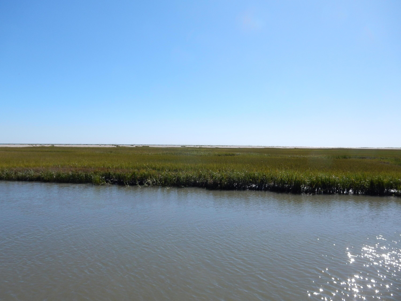 Photo of 982 Hammocks Way, Edisto Island, SC 29438