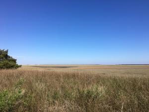 Home for Sale Sound View Drive, Hamlin Plantation, Mt. Pleasant, SC