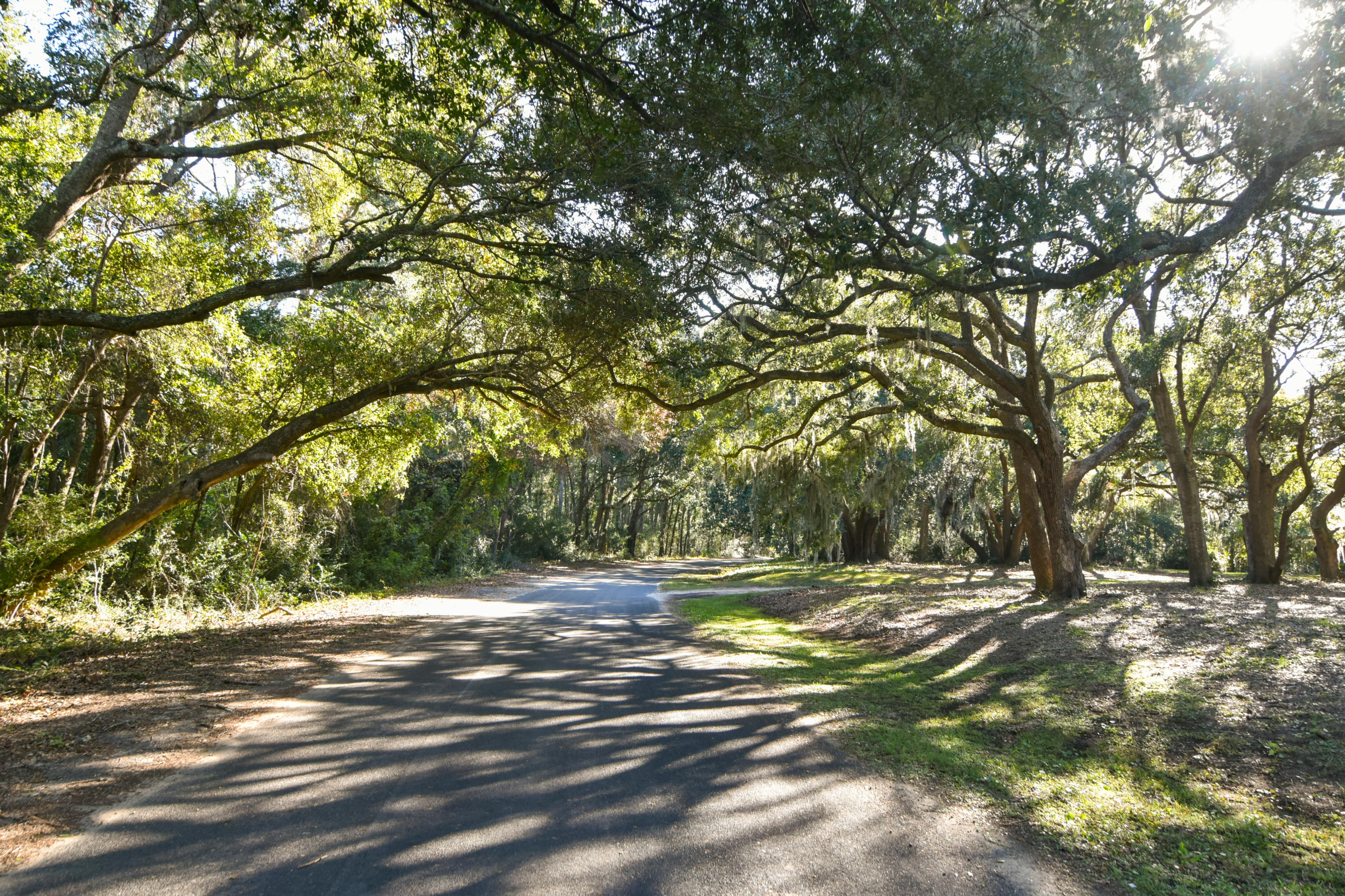Photo of 0 Cherry Point Road