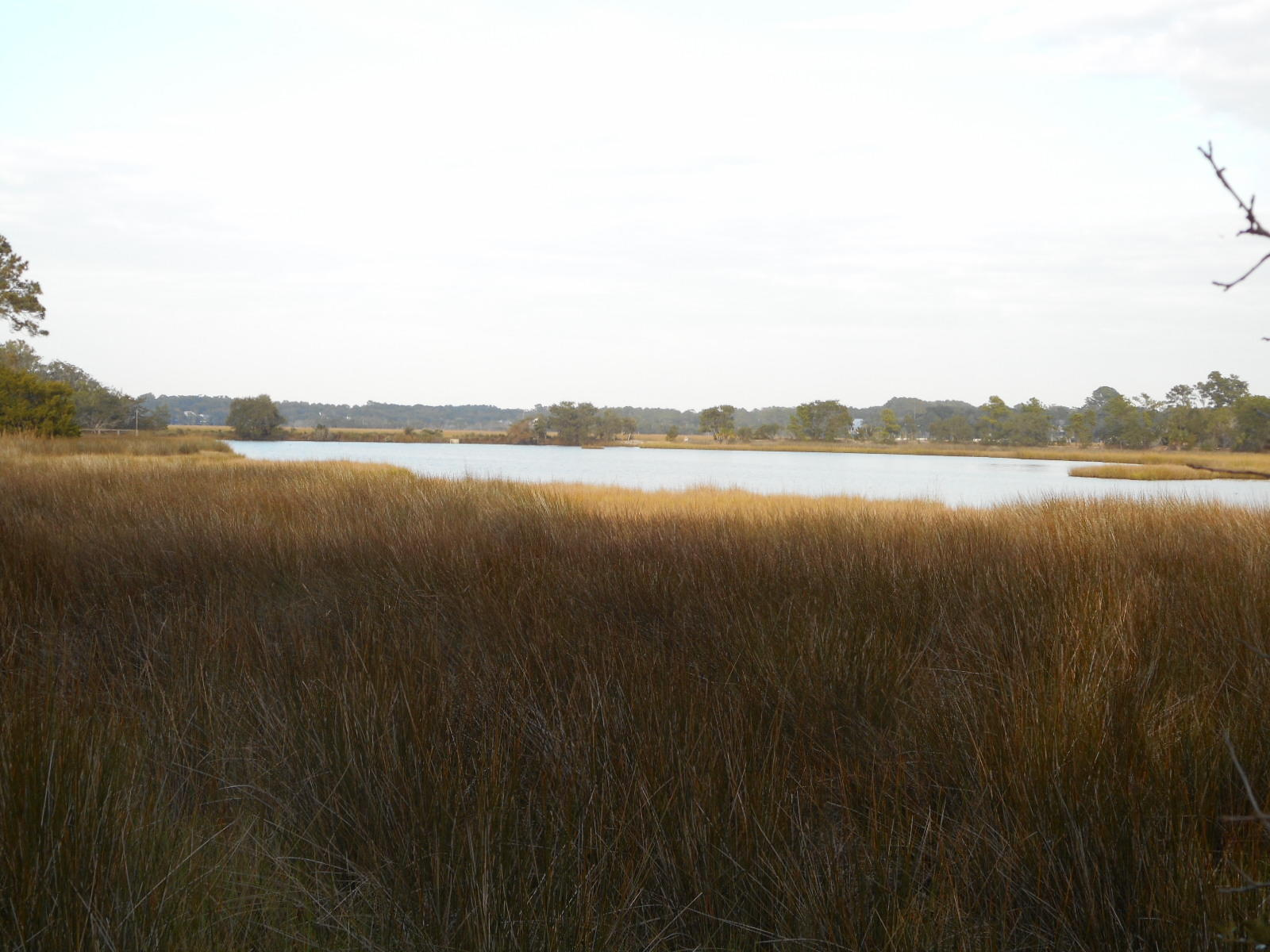 Photo of 8962 Palmetto Rd, Edisto Island, SC 29438