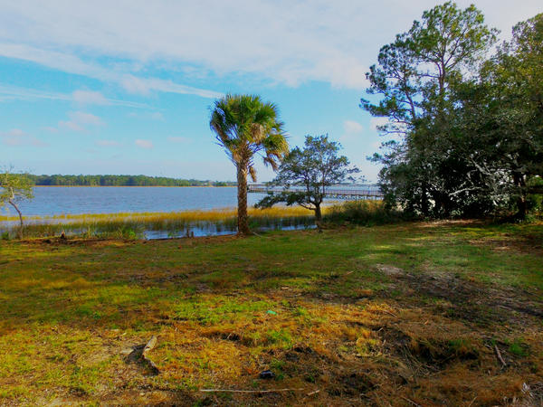 Photo of 1220 Rivers Reach Dr, Charleston, SC 29492