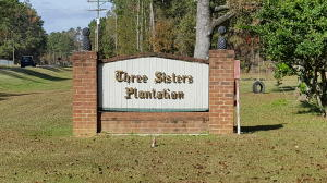 Home for Sale Marjoram Street, Three Sisters, Summerville, SC