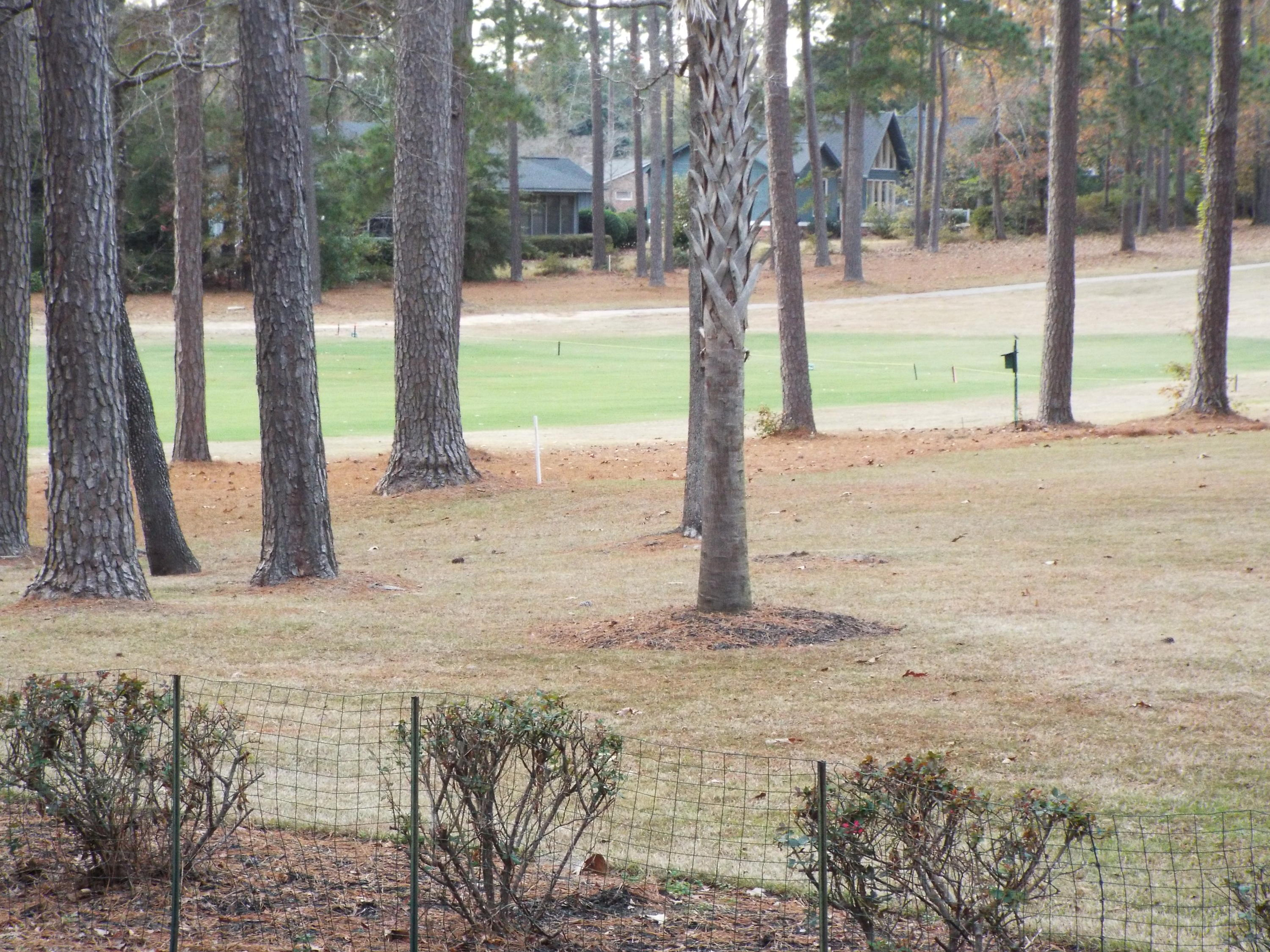 Photo of 110 Wateree Dr, Santee, SC 29142