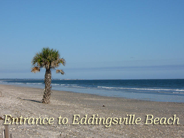 Photo of 49 Lost Village Trail, Edisto Island, SC 29438