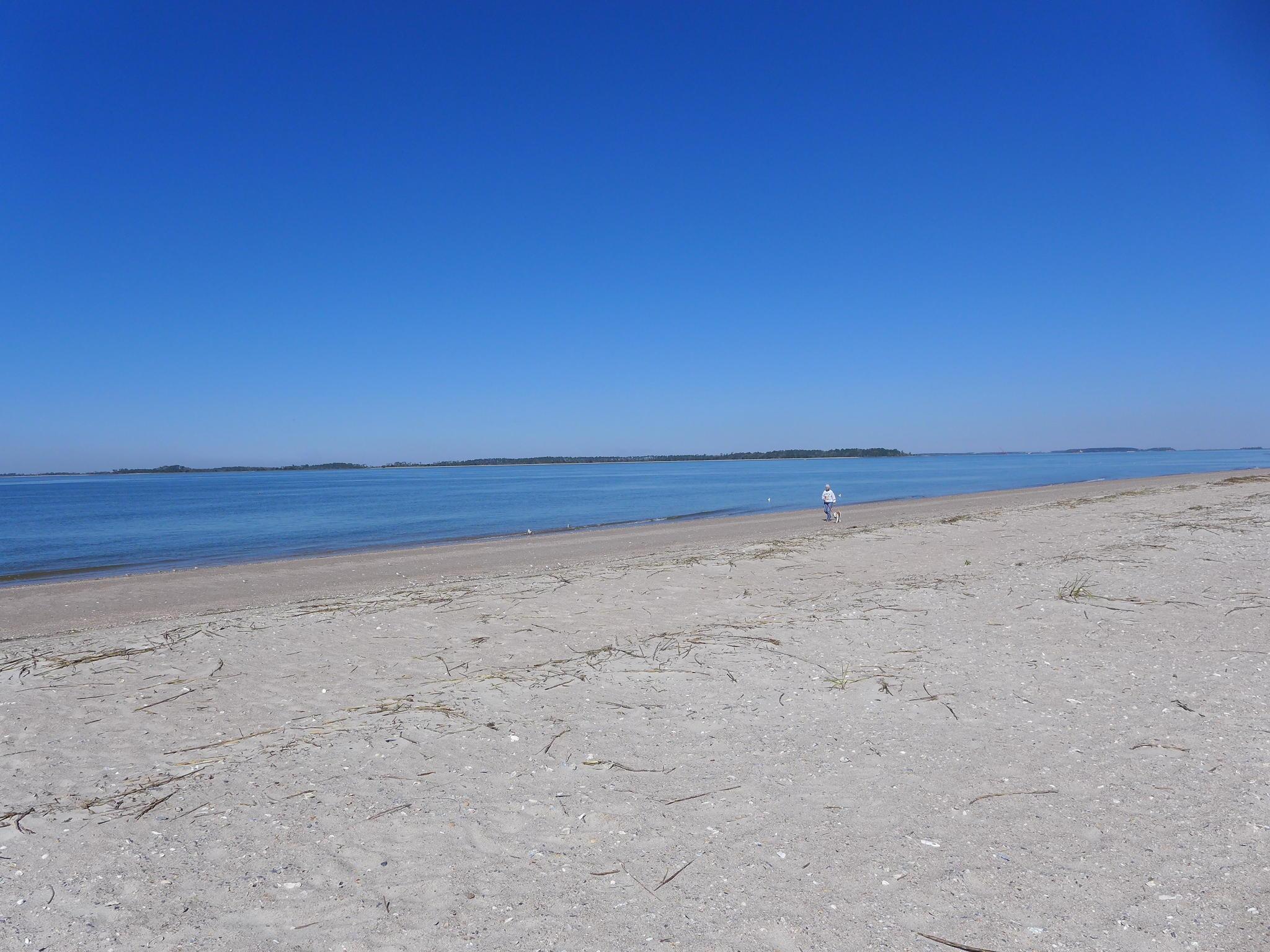 Photo of 3405 Myrtle St, Edisto Island, SC 29438