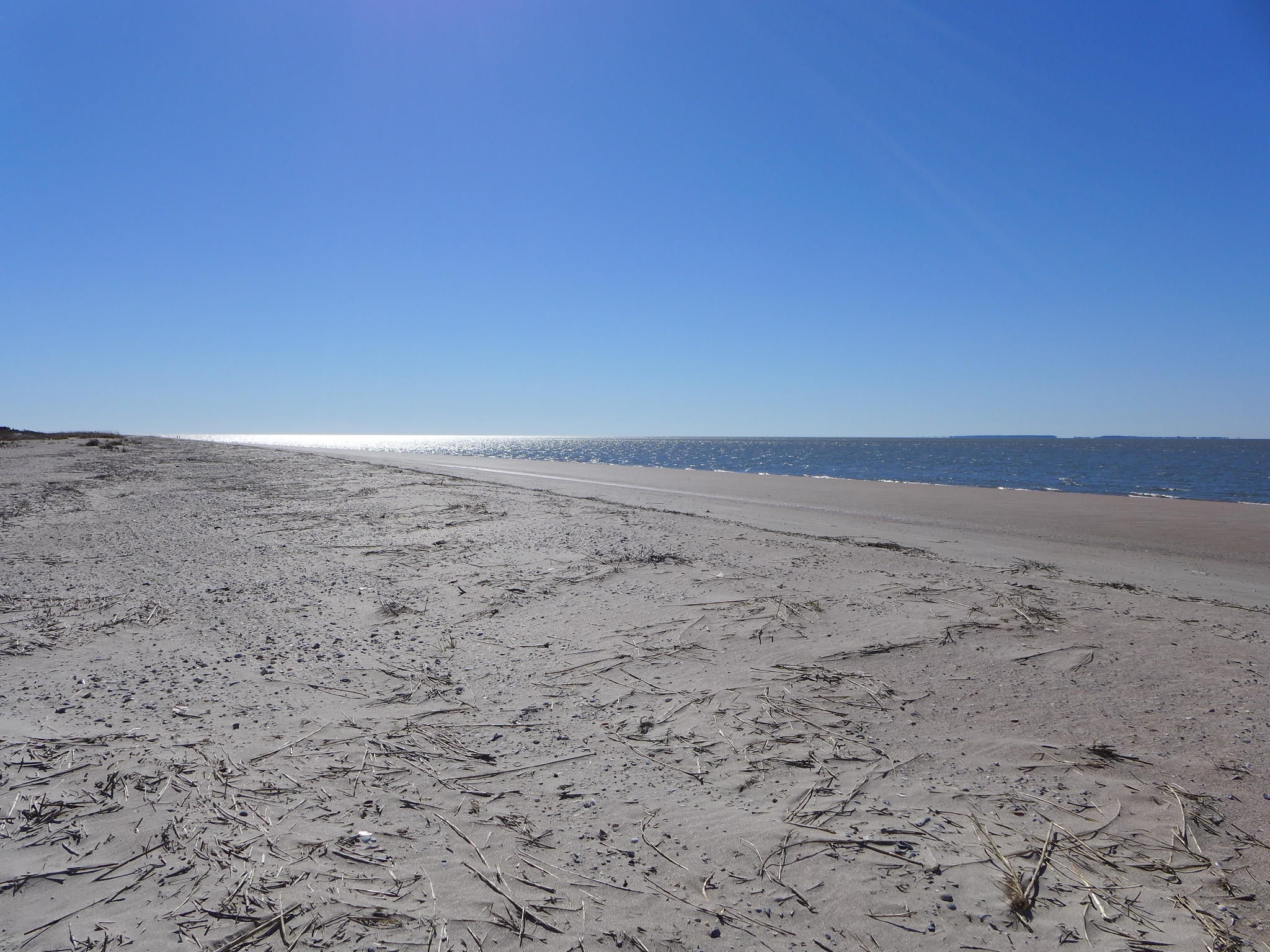 Photo of 3509 Palmetto Blvd, Edisto Island, SC 29438