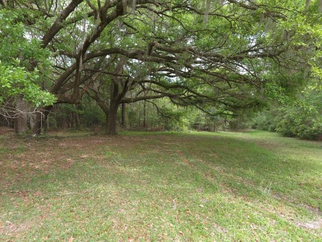 Photo of 5972 Joseph Blake Ln, Wadmalaw Island, SC 29487