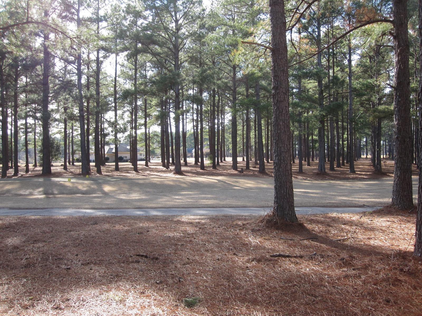 Photo of 245 Plantation Dr, Manning, SC 29102
