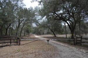 101 RAIN LILLY LANE, EUTAWVILLE, SC 29048  Photo 1