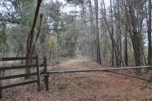 101 RAIN LILLY LANE, EUTAWVILLE, SC 29048  Photo 2