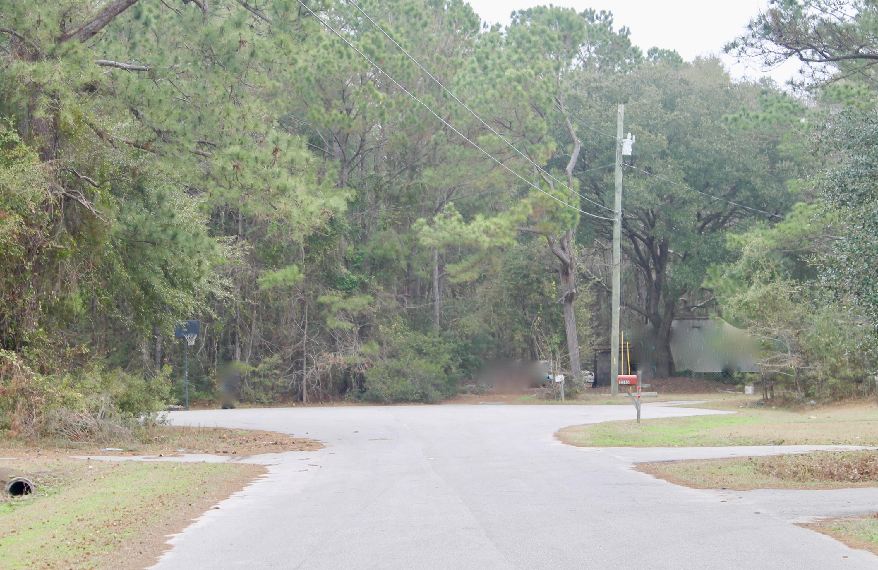 Six Mile Homes For Sale - 2245 Sally Gailliard, Mount Pleasant, SC - 20