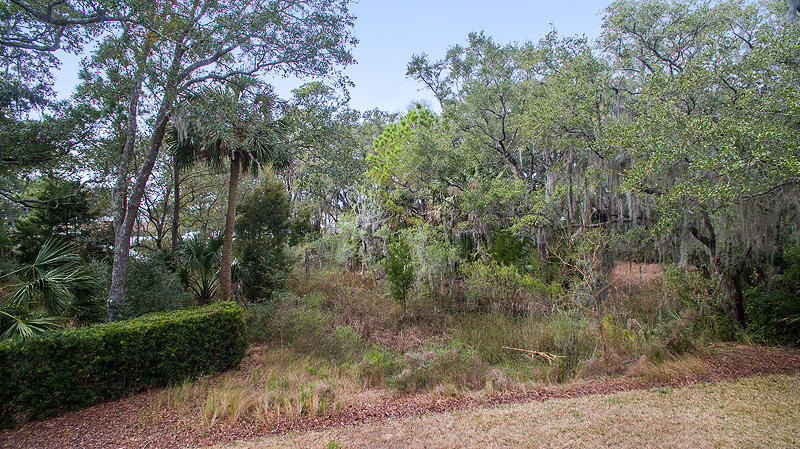 Photo of 95 Salthouse Ln, Johns Island, SC 29455