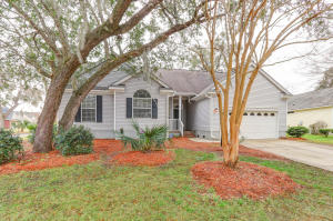 Home for Sale Wild Olive Drive, Seaside Farms, Mt. Pleasant, SC