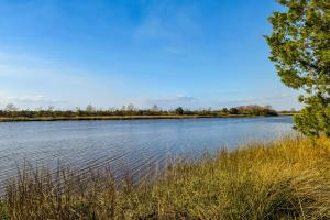 Home for Sale Highway 174 , Whippies, Edisto Island, SC