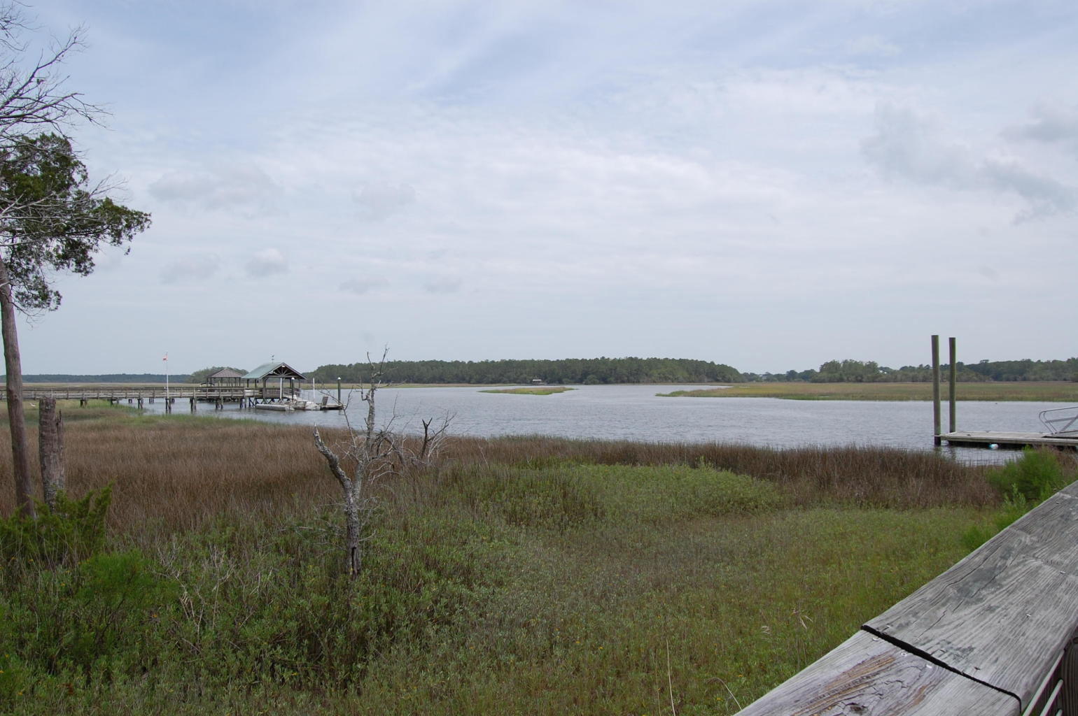 Photo of 441 Elfes Field Ln, Charleston, SC 29492