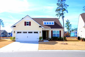 Home for Sale Four Seasons Boulevard, Cane Bay Plantation, Berkeley Triangle, SC