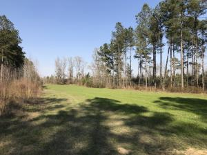 Home for Sale Highway 15 Highway, Dorchester County, SC