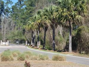 1089 WASSAMASSAW PLANTATION DRIVE, MONCKS CORNER, SC 29461  Photo 14