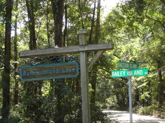 Bailey Island Club Homes For Sale - 2145 Bailey Island, Edisto Island, SC - 43