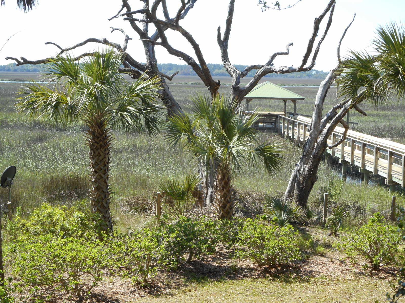 Bailey Island Club Homes For Sale - 2145 Bailey Island, Edisto Island, SC - 12
