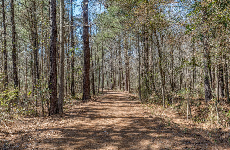 Photo of 211 Sea Horse Ln, Huger, SC 29450