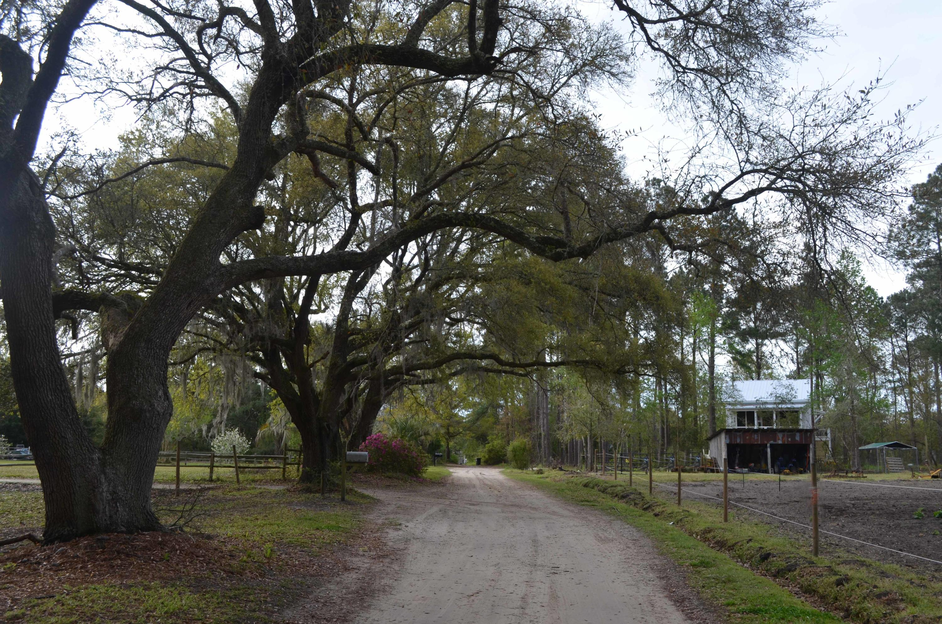 Photo of 812 Old Cemetery Rd, McClellanville, SC 29458