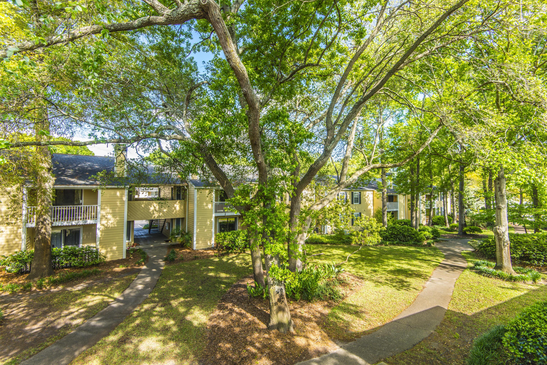 Hibben Ferry II Homes For Sale - 1054 Anna Knapp, Mount Pleasant, SC - 19