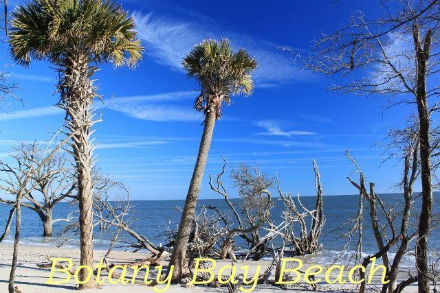 Photo of 520 Palmetto Blvd, Edisto Island, SC 29438