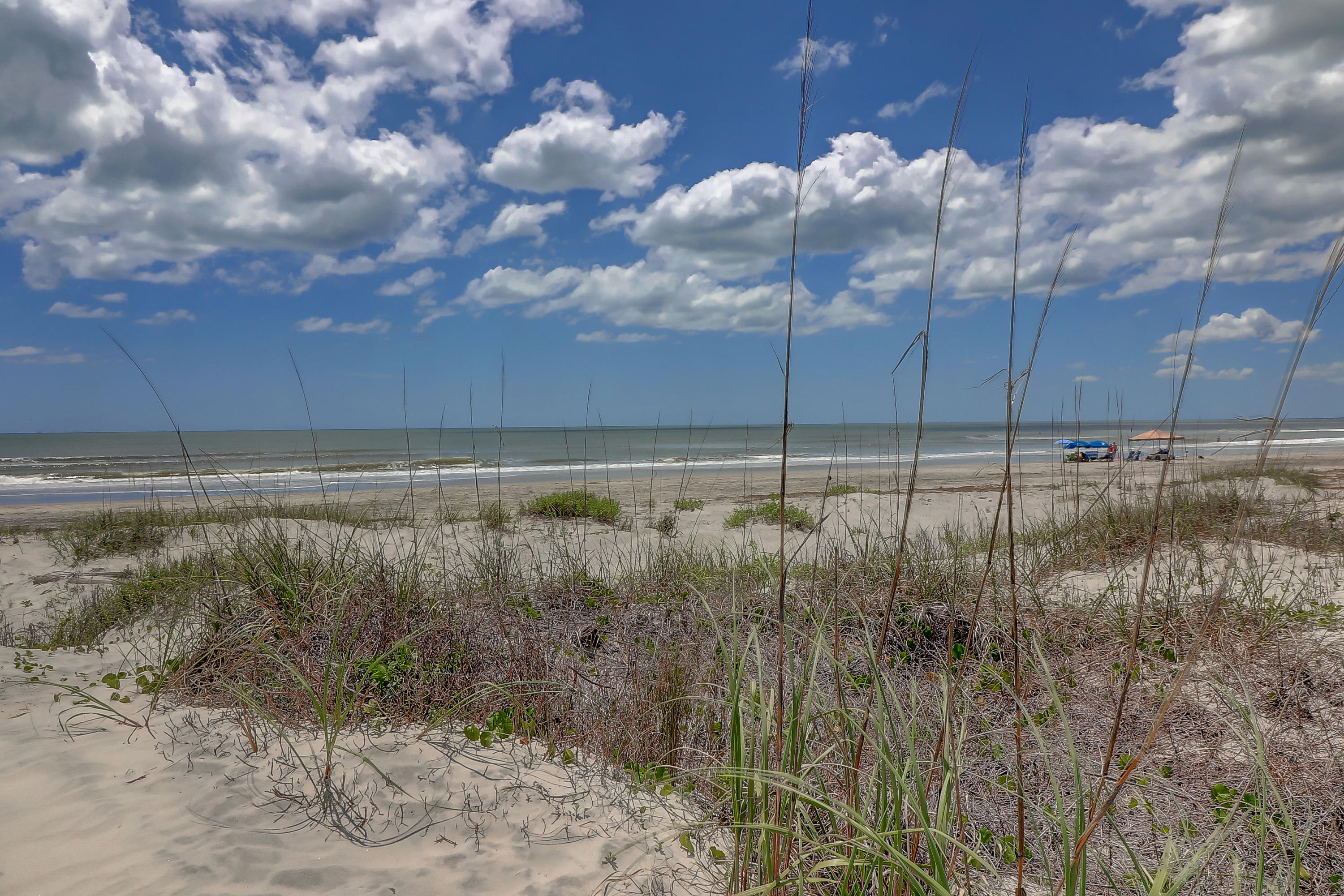 Isle of Palms Homes For Sale - 1 47th (1/13th), Isle of Palms, SC - 43