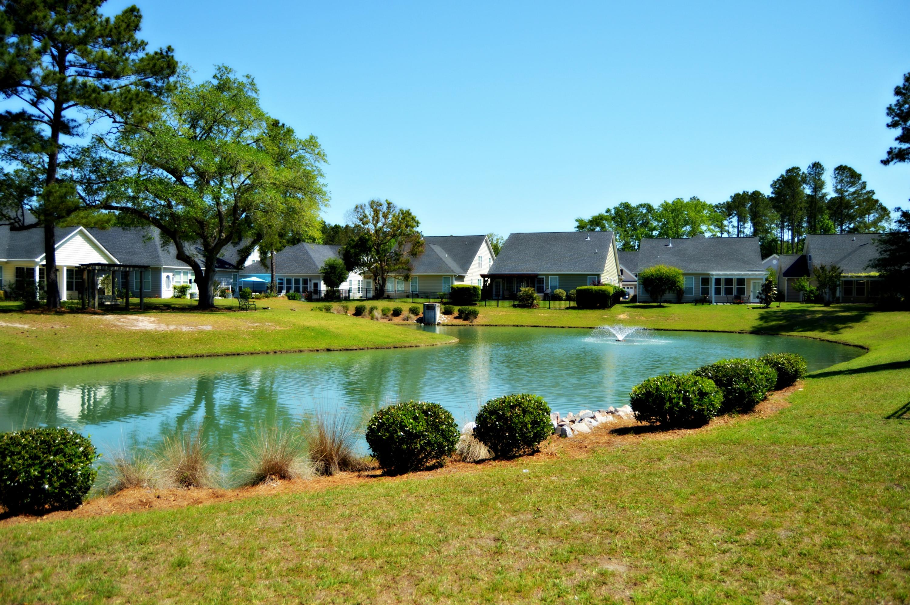Pines at Gahagan Homes For Sale - 127 Brutus, Summerville, SC - 15