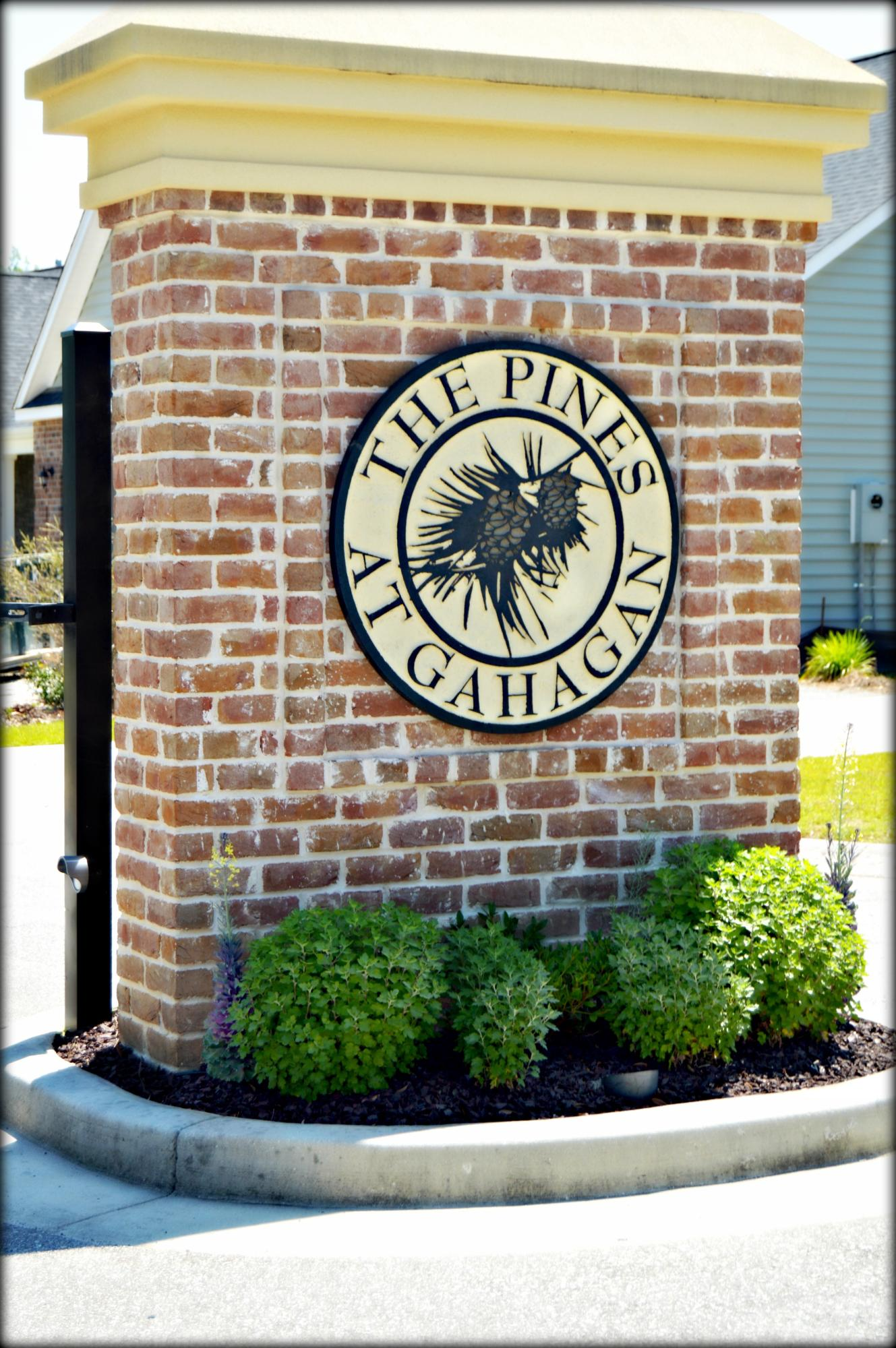 Pines at Gahagan Homes For Sale - 127 Brutus, Summerville, SC - 18