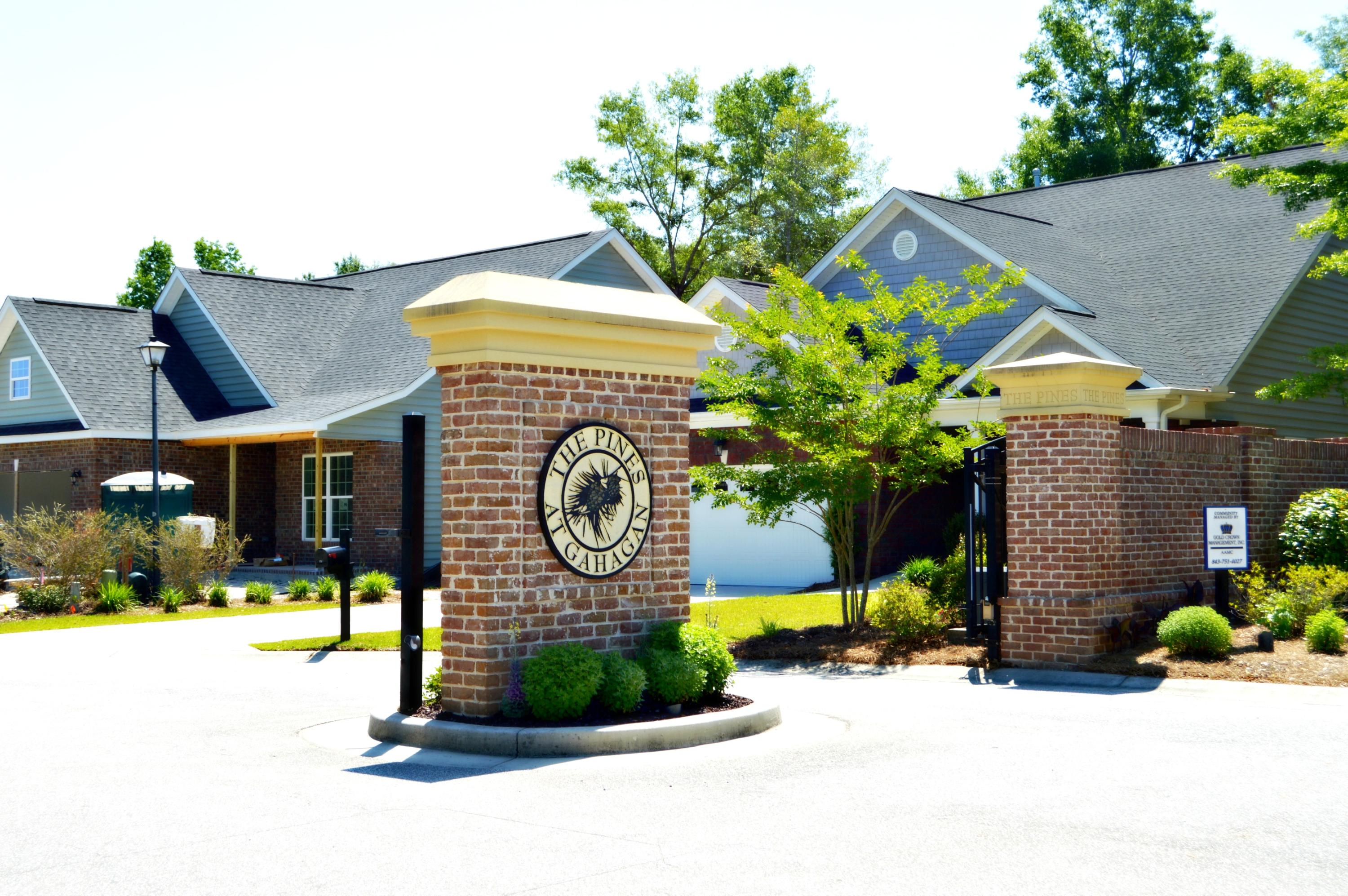 Pines at Gahagan Homes For Sale - 127 Brutus, Summerville, SC - 3
