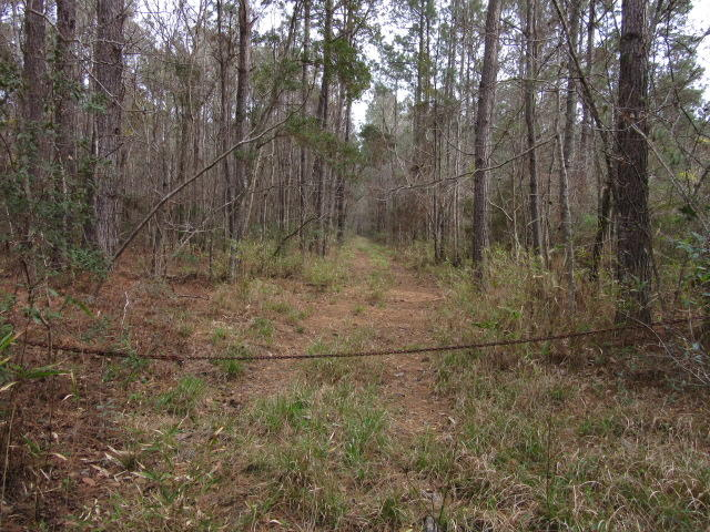Photo of 9881 N Hwy 17, McClellanville, SC 29458