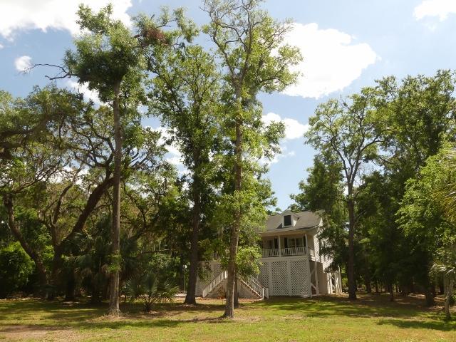 The Neck Homes For Sale - 8921 Palmetto, Edisto Island, SC - 38
