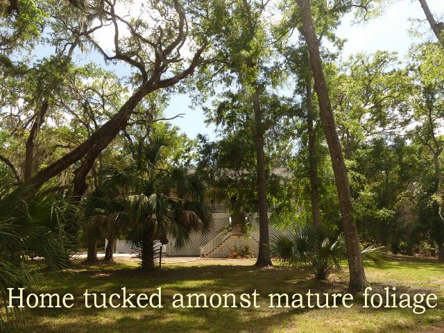 The Neck Homes For Sale - 8921 Palmetto, Edisto Island, SC - 70