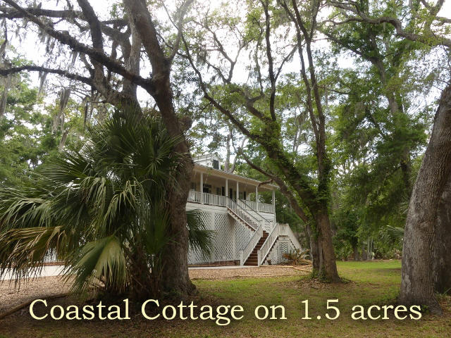 The Neck Homes For Sale - 8921 Palmetto, Edisto Island, SC - 30