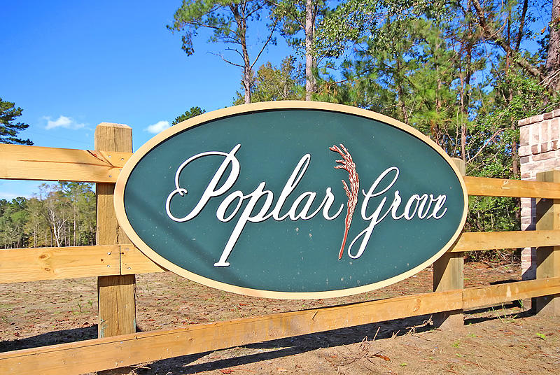 Poplar Grove Homes For Sale - 3995 Capensis, Hollywood, SC - 110
