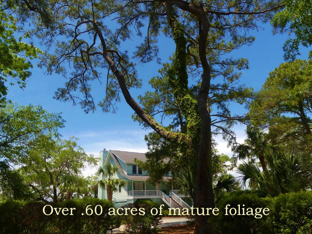 Fishing Creek Resort Homes For Sale - 8195 Wahoo, Edisto Island, SC - 29