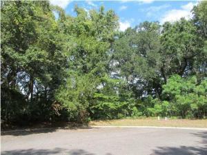 Home for Sale Turtle Landing Court, Kiawah River Estates, Johns Island, SC