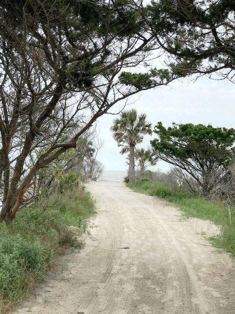 Jeremy Cay Homes For Sale - 49 Planters Retreat, Edisto Island, SC - 18