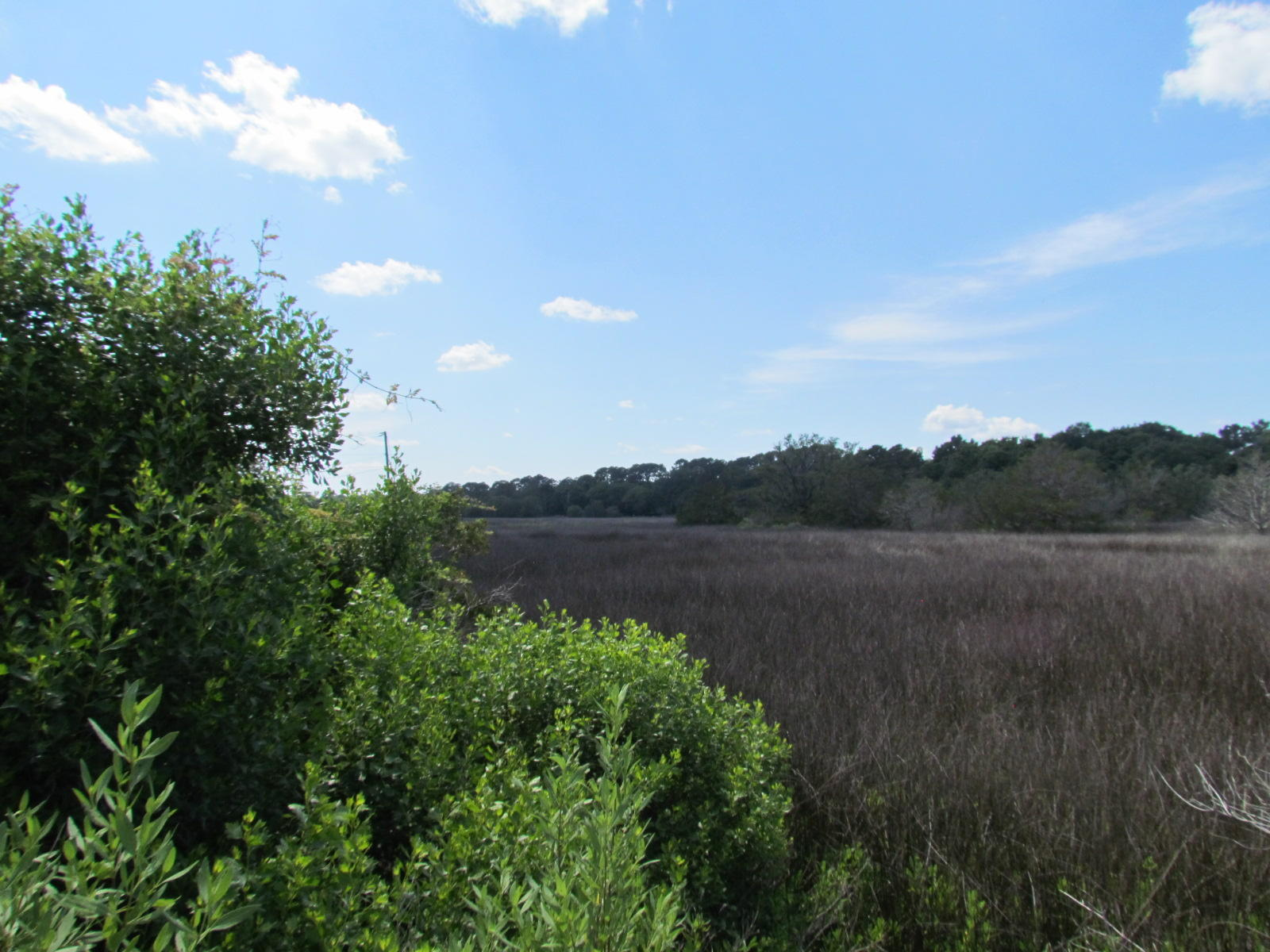 Photo of 673 SC-174, Edisto Island, SC 29438