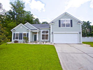 Home for Sale Blue Dragonfly Drive, Grand Oaks Plantation, West Ashley, SC