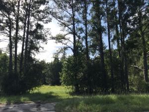 Home for Sale Highway 162 , Clementia, Rural West Ashley, SC